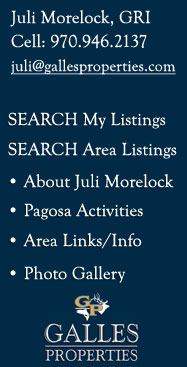 pagosa springs co real estate
